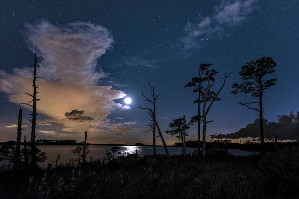 National Wildlife Refuge Wall Art - Photograph - Moon Over Blackwater by Robert Fawcett