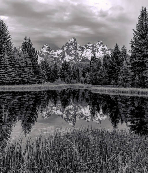Photograph - Morning Reflections by Dan Sproul
