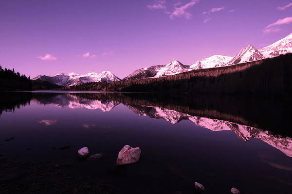 Photograph - Morning Reflections by Mark Smith