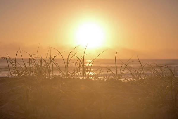 Beach City Photograph - Morning Sun by Az Jackson