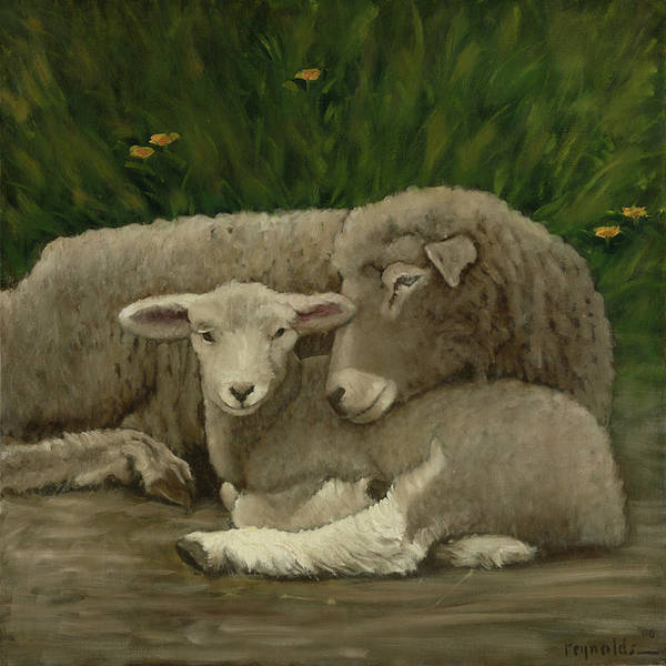 Sheep Painting - Mother And Lamb by John Reynolds