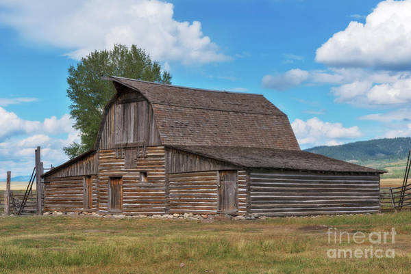 Photograph - Moulton Barn by Sharon Seaward