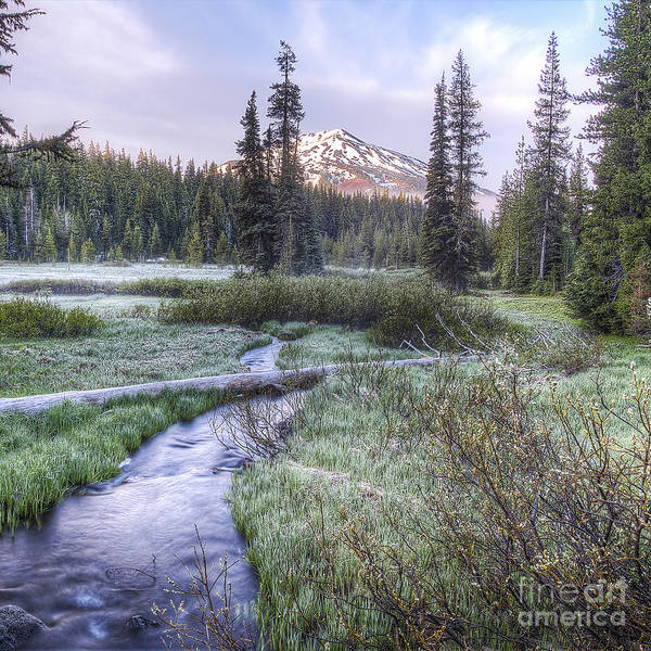 Wall Art - Photograph - Mount Bachelor From Soda Creek At Sunrise by Twenty Two North Photography