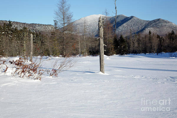 Photograph - Mount Carrigain - White Mountains New Hampshire Usa by Erin Paul Donovan