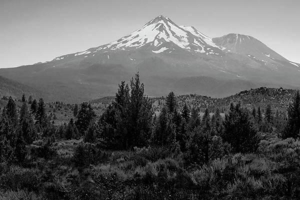 Photograph - Mount Shasta And Shastina by Frank Wilson