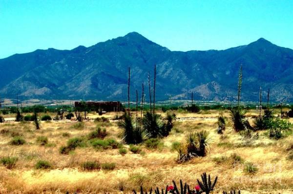 Photograph - Mountain Desert by Stanley Morganstein