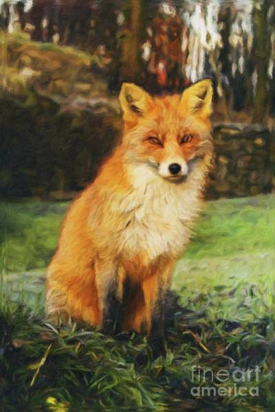 Pussy Painting - Mr Fox by Sarah Kirk