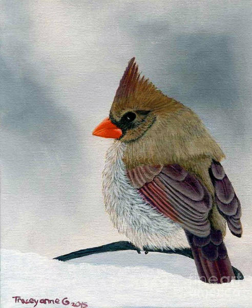 Painting - Mrs. Cardinal by Tracey Goodwin