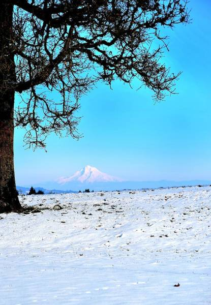 Photograph - Mt. Hood Stoller by Jerry Sodorff