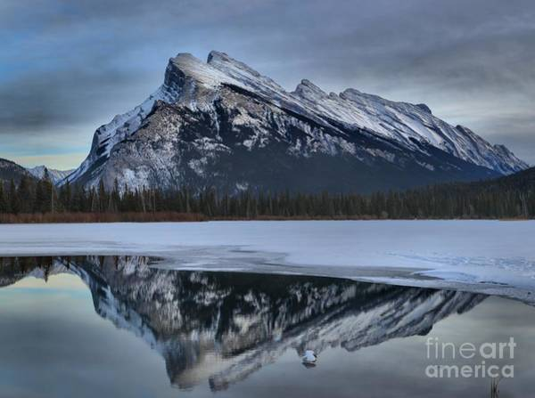 Photograph - Mt Rundle Reflections by Adam Jewell