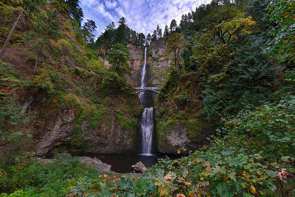 Photograph - Multnomah Falls by Mark Whitt