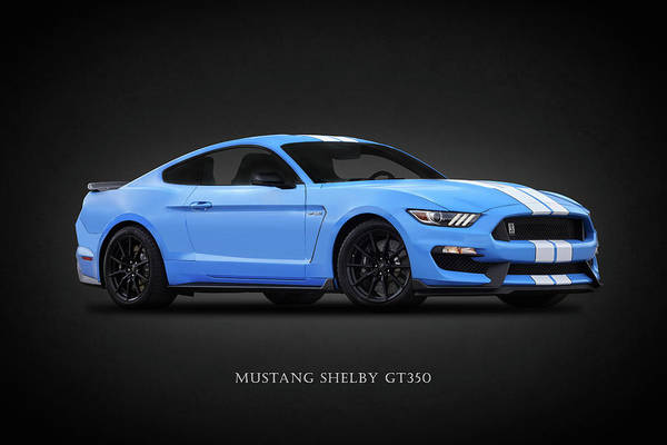 Wall Art - Photograph - Mustang Shelby Gt350 by Mark Rogan