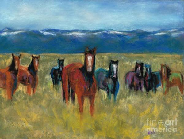 Mustangs In Southern Colorado Art Print