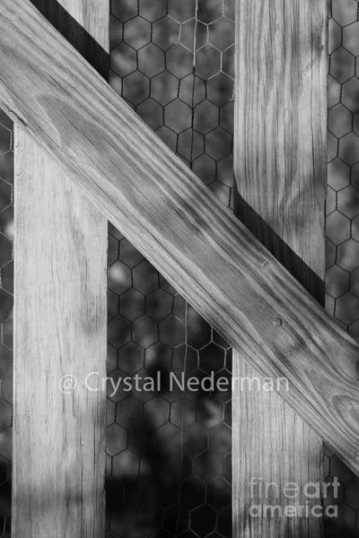 Photograph - N-3 by Crystal Nederman