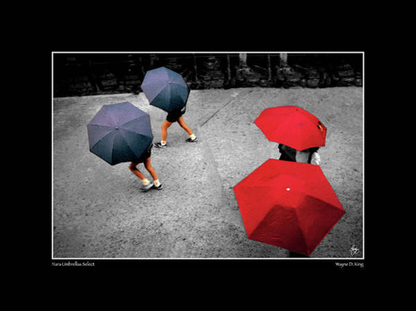 Photograph - Nara Umbrellas Select Poster by Wayne King