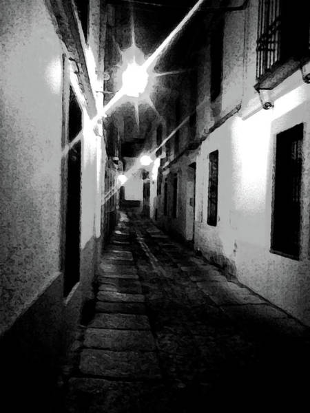 Photograph - Narrow by Laura Greco