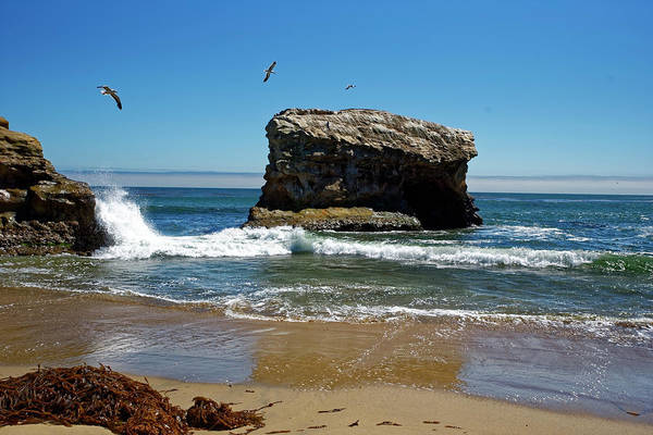 Photograph - Natural Bridges State Park by Peter Ponzio