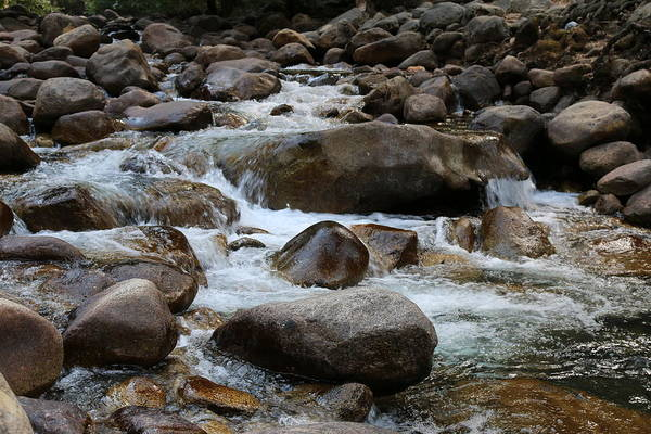 Photograph - Nature's Flow - 3 by Christy Pooschke