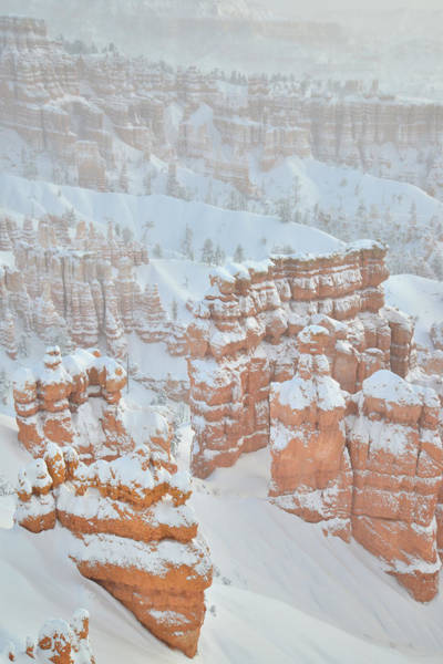Photograph - Navajo Loop Trail by Ray Mathis