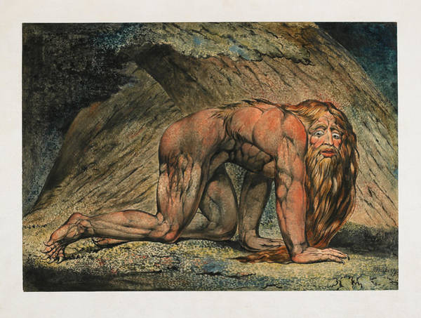 William Blake Drawing - Nebuchadnezzar by William Blake