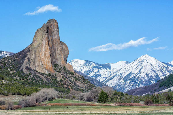 Photograph - Needle Rock by Angela Moyer