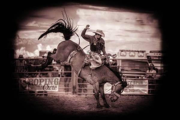 Prca Wall Art - Photograph - Saddle Bronc by Chad Rowe