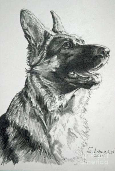 German Shepherd Drawing - Jyode by Suzanne Leonard