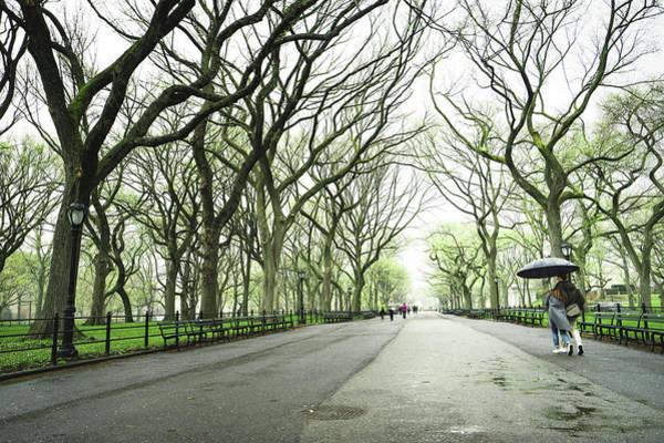 Elm Photograph - New York City Romance by Vivienne Gucwa