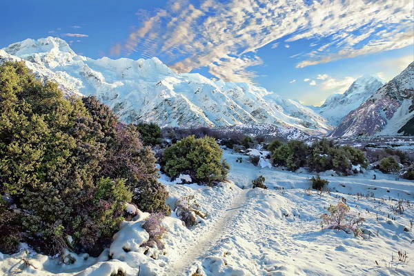Photograph - New Zealand Mountain Range by Anthony Dezenzio