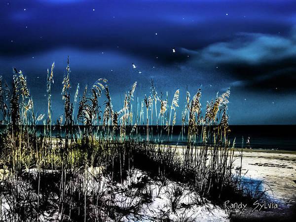 Photograph - Night Moves by Randy Sylvia