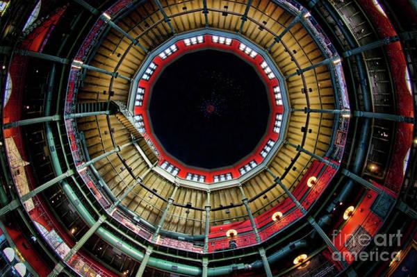 Photograph - Nott Looking Up by Neil Shapiro