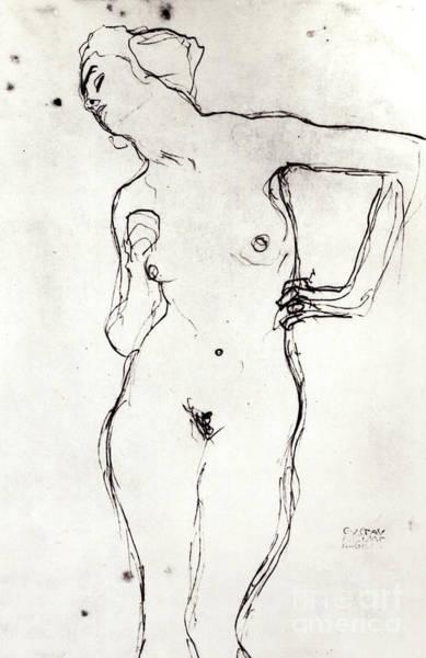Wall Art - Drawing - Nude by Gustav Klimt