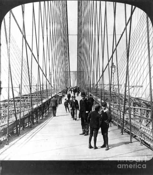 Photograph - Ny: Brooklyn Bridge, 1901 by Granger