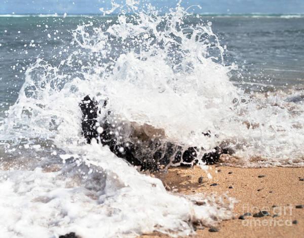 Photograph - Oahu North Shore Splash by John Bowers