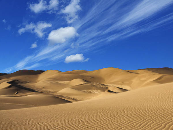 Expanse Photograph - Ocean Of Sand by Dominic Piperata