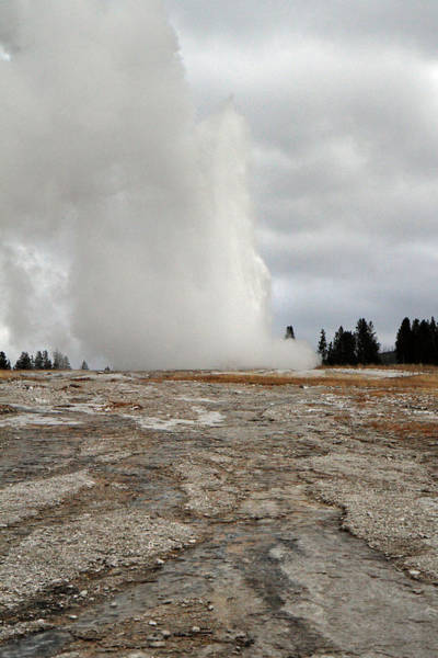 Photograph - Old Faithful Yellowstone by Pierre Leclerc Photography