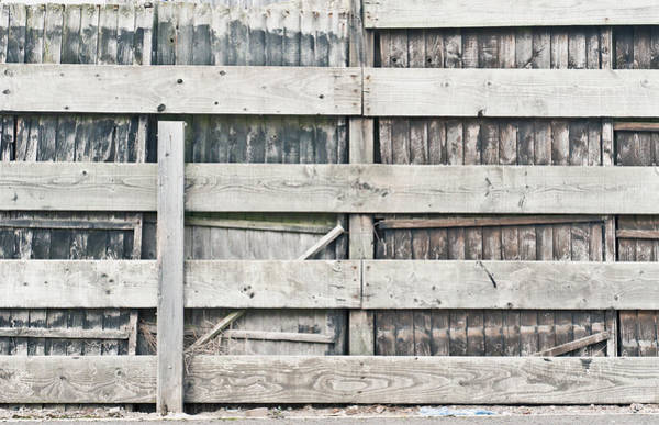 Condition Wall Art - Photograph - Old Fence by Tom Gowanlock