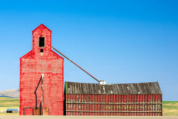 Photograph - Old Red by Todd Klassy