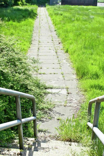 Wall Art - Photograph - Old Stone Path by Tom Gowanlock