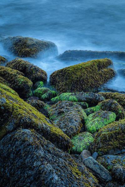 Robinson Photograph - On The Rocks by Nicole Robinson
