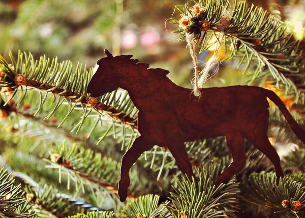 Photograph - One Horse Open Sleigh by JAMART Photography