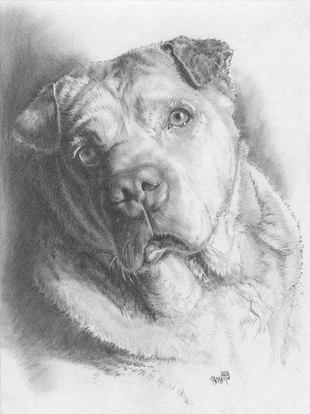 Mutt Drawing - Maxie by Barbara Keith