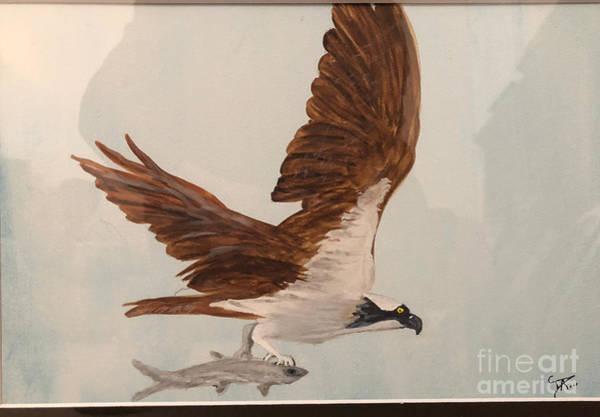 Painting - Osprey by Donald Paczynski
