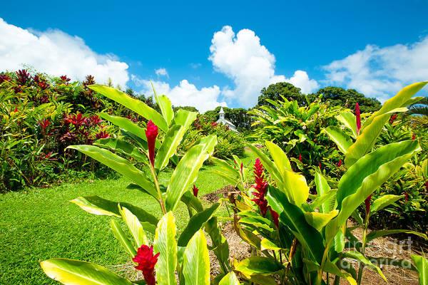 Photograph - Our Lady Of Fatima Shrine And  White Coral Miracle Church Tropical Garden Wailua Maui Hawaii by Sharon Mau