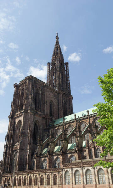 Wall Art - Photograph - Our Lady Of Strasbourg by Teresa Mucha