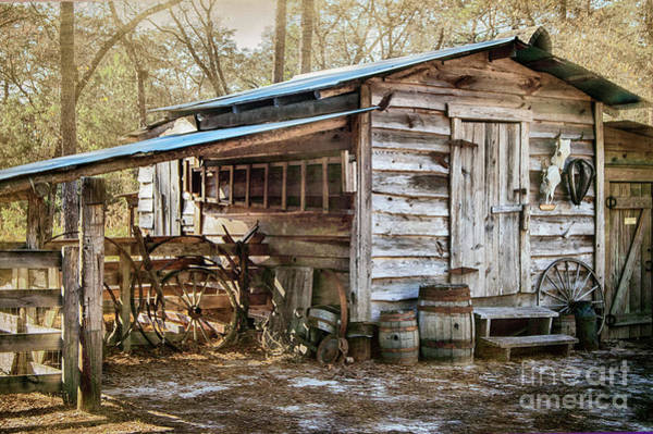Photograph - Outbuilding by Judy Hall-Folde