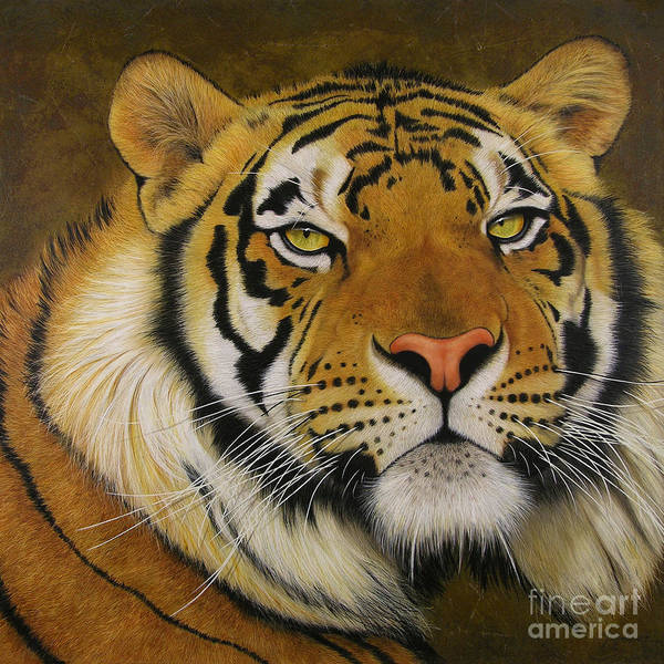 Bengal Tiger Painting - Ozzi by Lawrence Supino