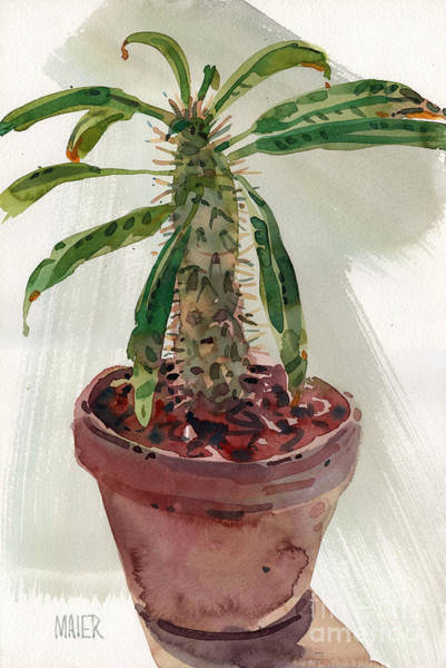 Potted Plant Painting - Pachypodium by Donald Maier
