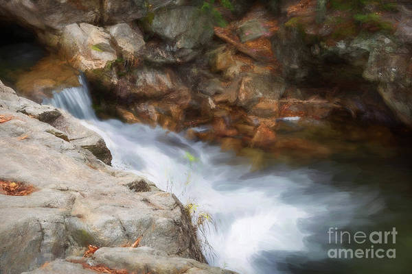 Photograph - Painted Stream by Sharon Seaward