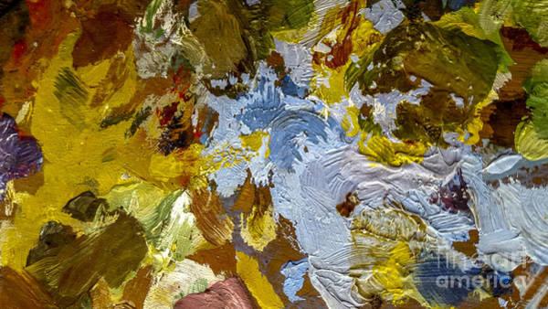 Oil Paints Photograph - Painter's Palette by Bernard Jaubert